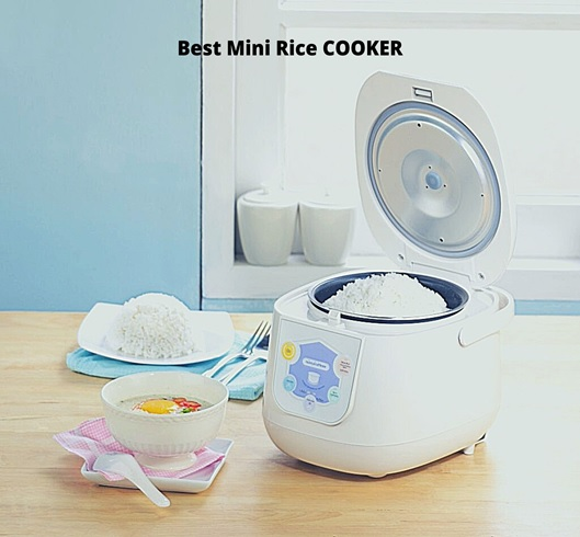 Before Buying Any Mini Rice Cooker – Read This!